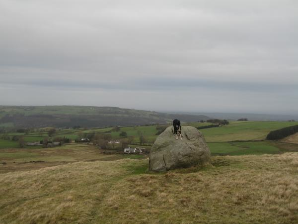Pippa bouldering on the way up to High Pike