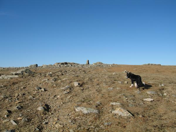 Pillar summit