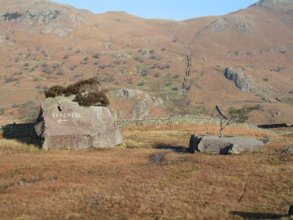 Rocks and trees with the path up Helm Crag beyond