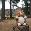 Prudence the Arapiles tiger!