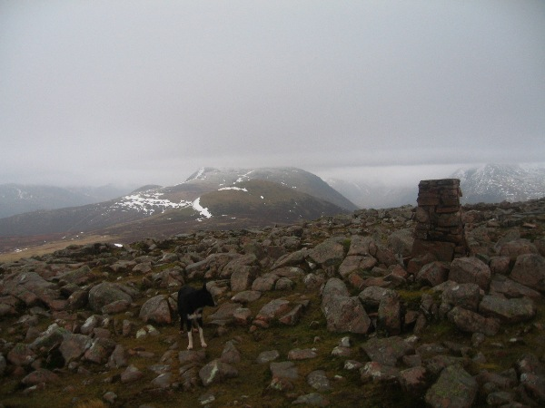Great Borne summit with Red Pike and Starling Dodd beyond