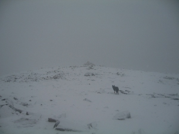 High Stile in the cloud