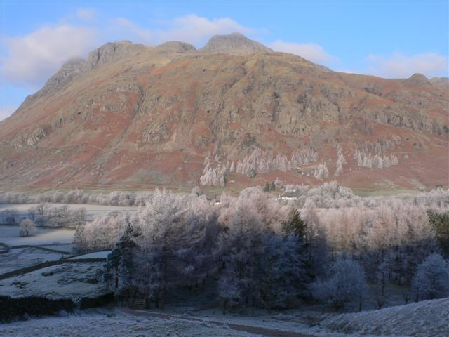 Nice frosty effect on the trees in Langdale