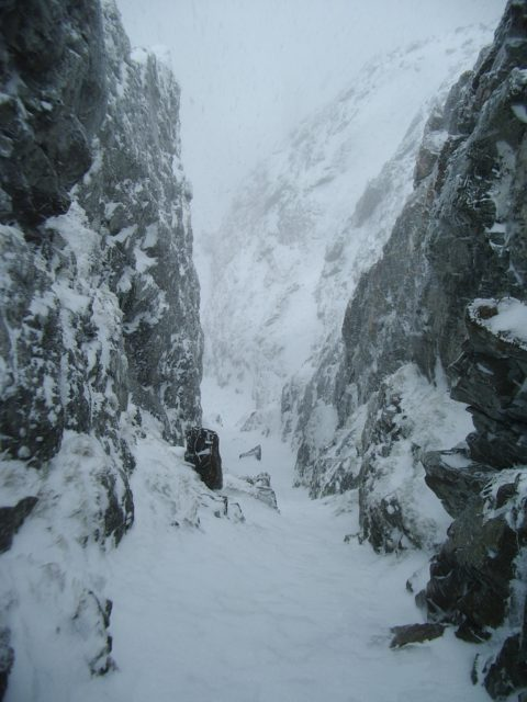 A view down the gully