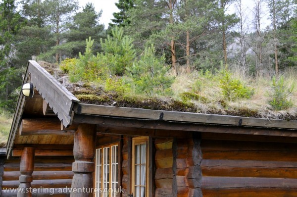 A traditional Norwegian roof