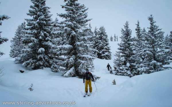 Richard, John, and Rebecca off-piste in the trees at Les Houches