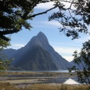 The Iconic Mitre Peak in Milford Sound (Photo Adrian Camm)